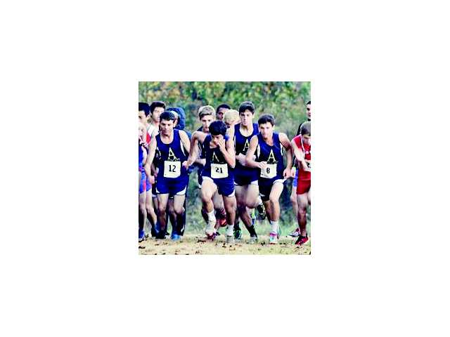 Apalachee's cross country men advance to Carrolton State meet