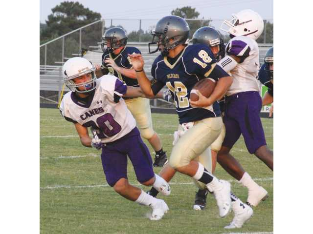 Victory returns for Wildcats