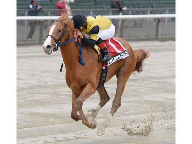 Kirkwood grad Freedom Child flies to win in Peter Pan