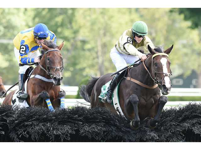 Brilliant Match gives Sheppard second Spa chase win in 2 days