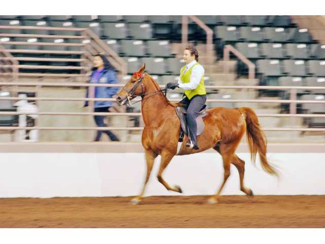 Local equestrians end show season with big wins