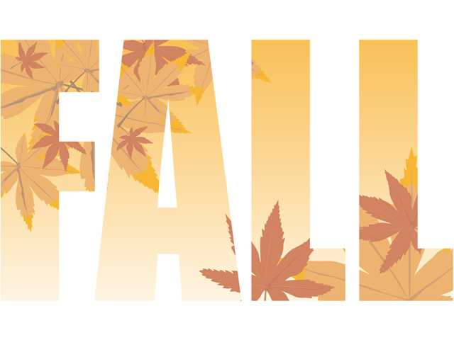 It's (finally) fall, y'all!