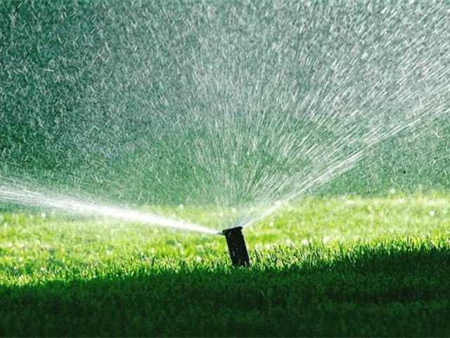 Lathrop cuts watering to 2 days