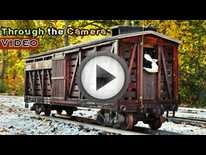 Miniature Trains (video)