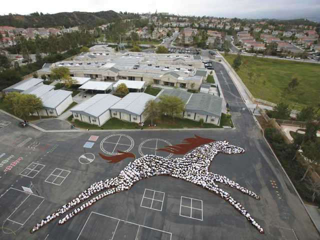 Pupils Form Horse for Art Project