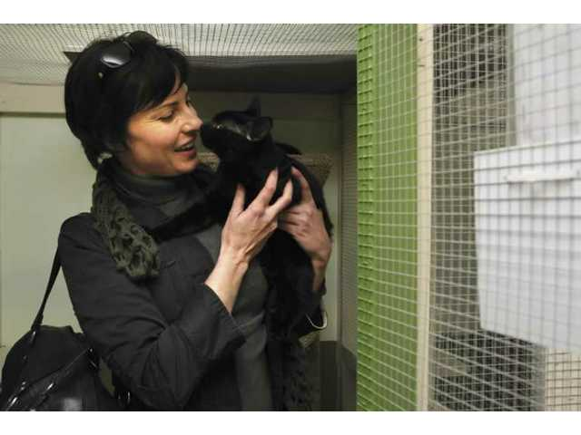 Abused Animals Find Healing Homes