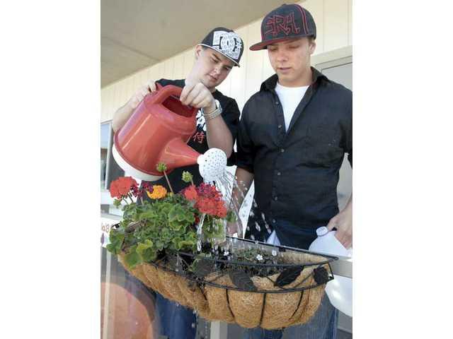 Planting for profit
