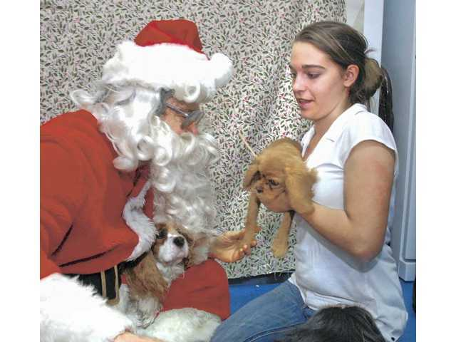 Pet Assistance hosts 'Pet Photos with Santa' this Saturday