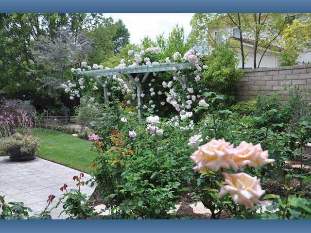 Memorial Garden Tour