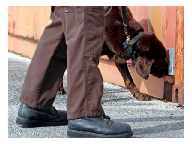 Justices hear arguments over police dog use