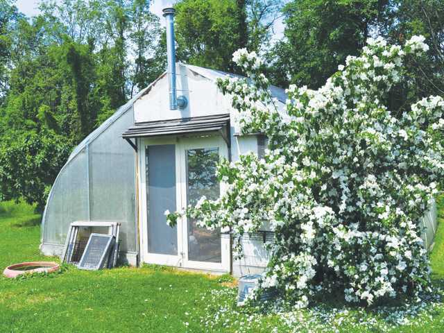 Imagine warmth: Dream about adding a greenhouse