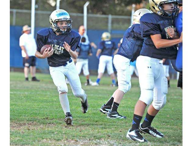 Safety first for Wildcats youth football