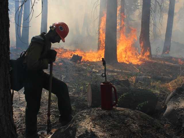 Hunter caused huge Yosemite wildfire