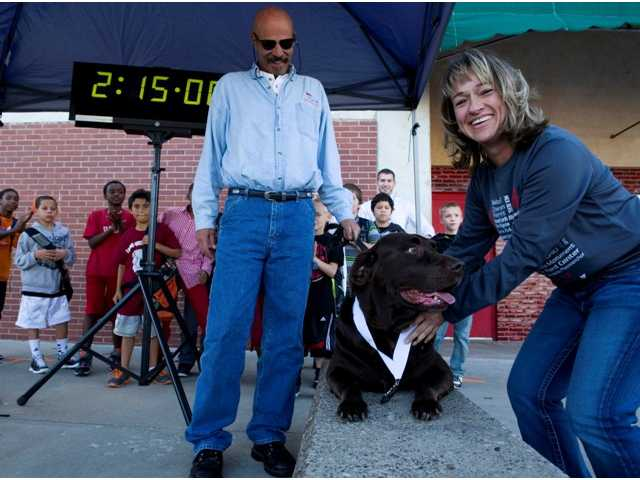 Dog that crashed half marathon dies a week later