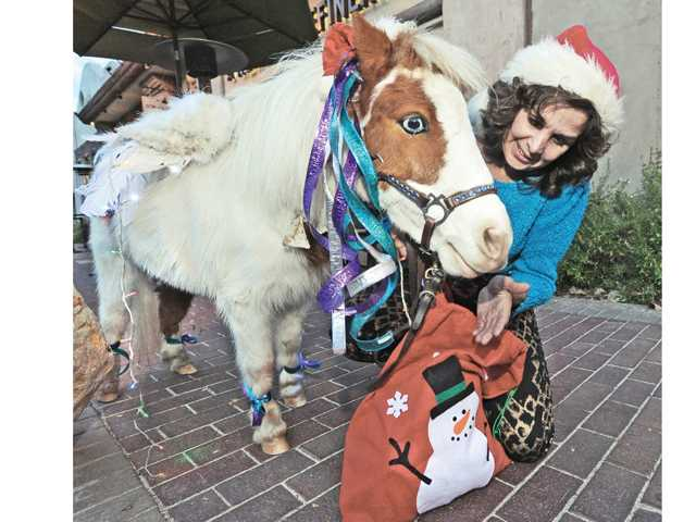 Small horse, big season's greetings