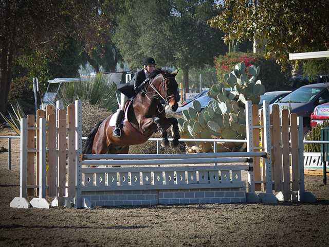 Valencia High School student dominates in equestrian competitions