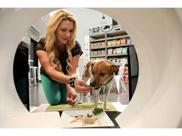 US trade group: Spending on pets at all-time high