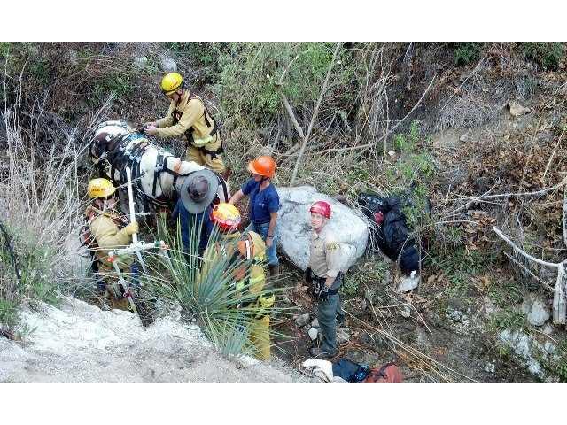UPDATE: SCV vet helps hoist injured horse after ravine tumble