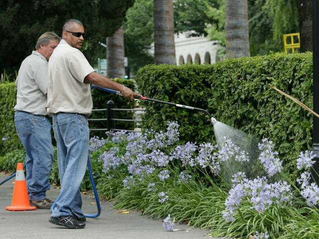 California board considers fines for wasting water
