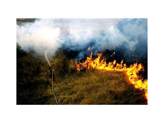 Brush fire season continues