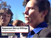 Signal News Now: Mercy Killings' in Canyon Country