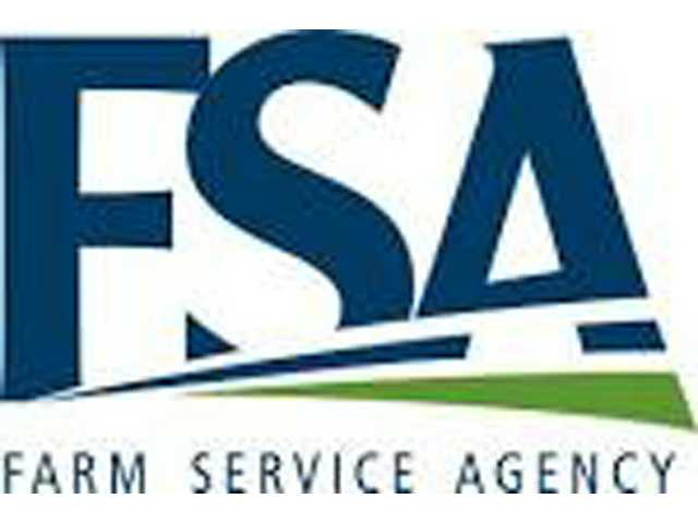 Nominations for Farm Service Agency elections underway