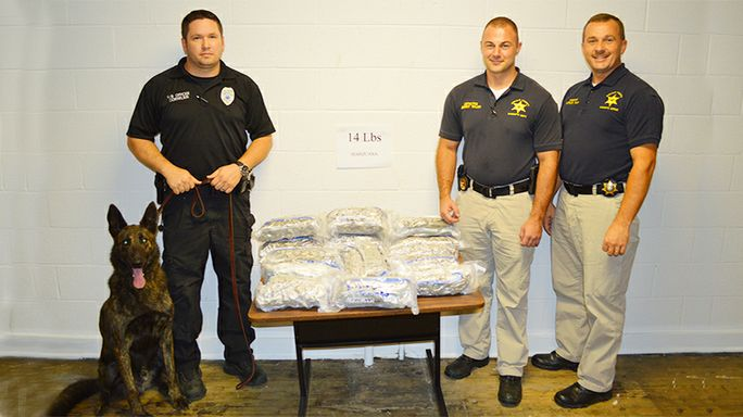 Bust nets 14 lbs. of weed