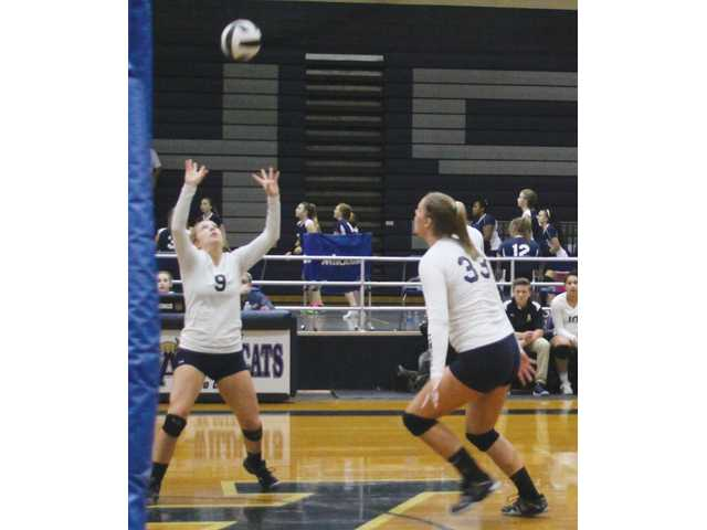 Chee volleyball top of the Area again