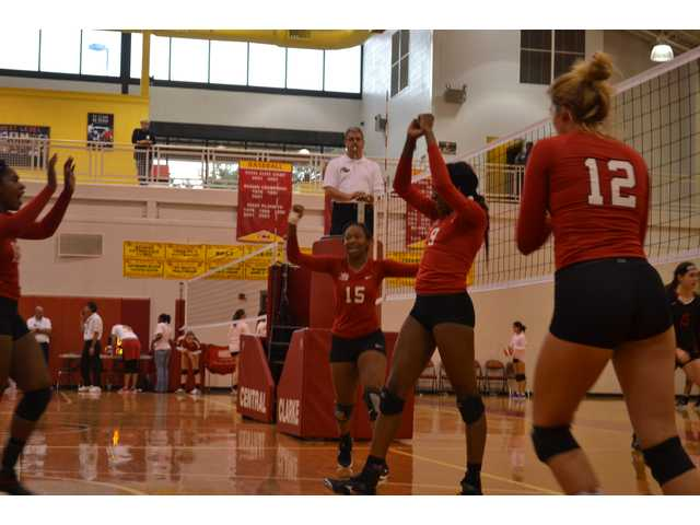 Volley Doggs advance to tourney's final day