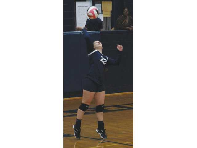 VolleyCats thrive, Lady Doggs survive in 1st round of tournament