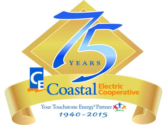 Man poses as Coastal Electric employee in South Bryan