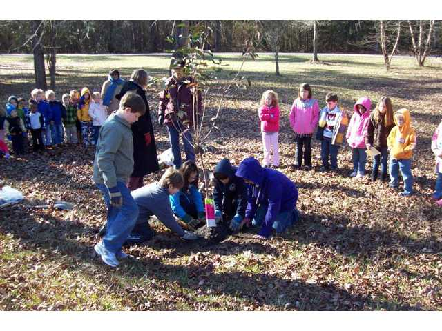 Arbor Day celebrated at MSC