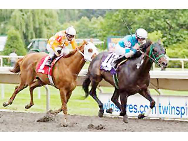Plum Pretty second in Hollywood Oaks