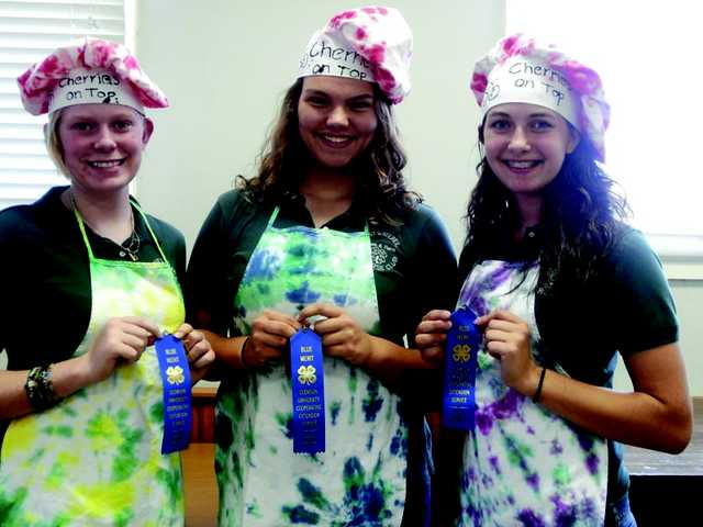 Kershaw County 4H senior team takes 1st place
