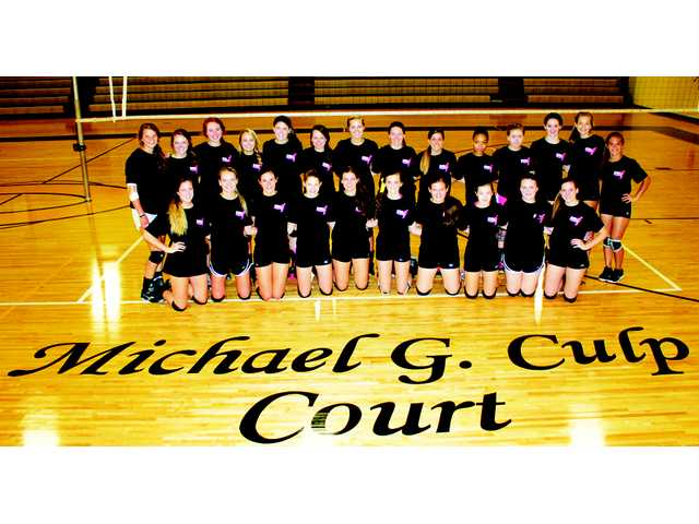 CHS holds Dig Pink volleyball event