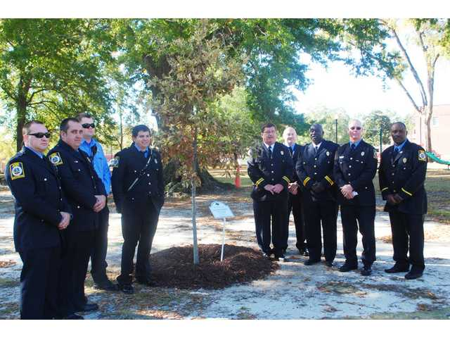 Camden's Arbor Day honors first responders