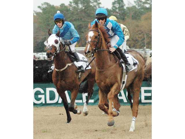 Sheppard jumpers in line for Eclipse Award