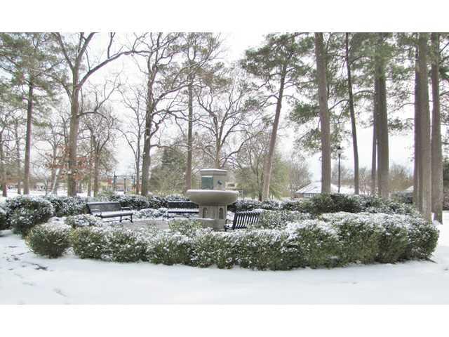 Feature photo: Winter wonderland