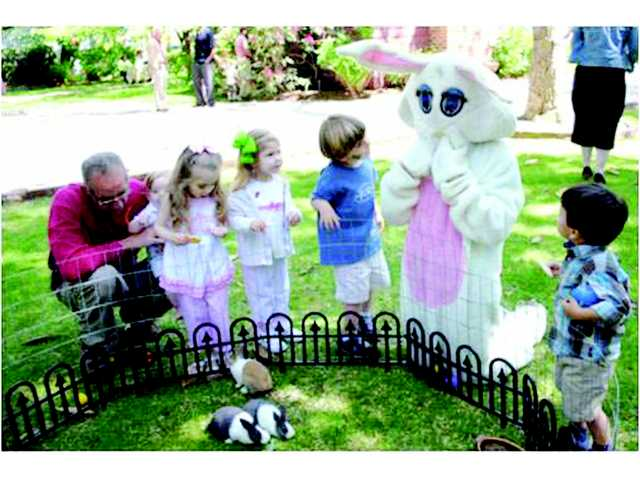 Aberdeen Easter Family Tour