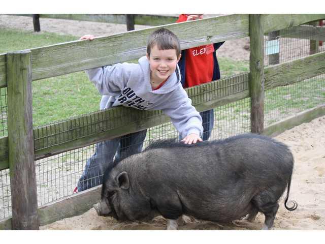 School Photo: Down on the Farm