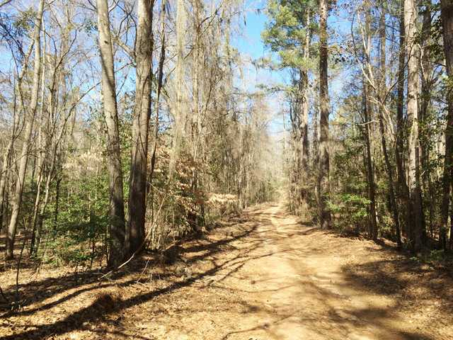NC writer retraces 18th century explorer's walk through the Carolinas