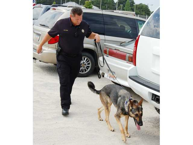 Back to school means back to work for KCSO dog Elsa