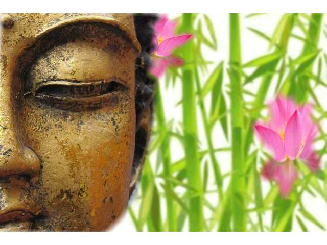 What seekers of financial advice can learn from Buddhism