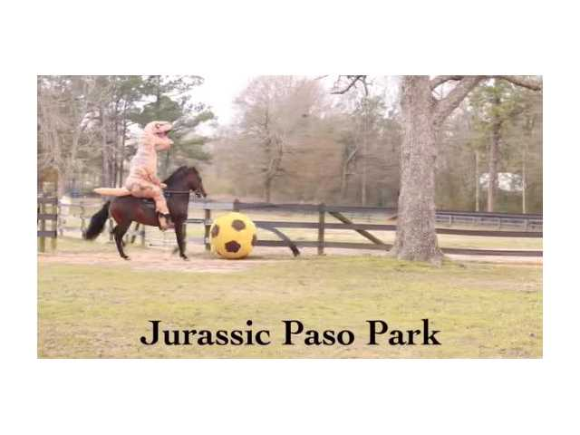 Have You Seen This? Jurassic horse park