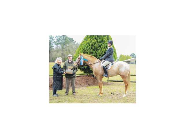 Camden Horse Show turns 108 Sunday