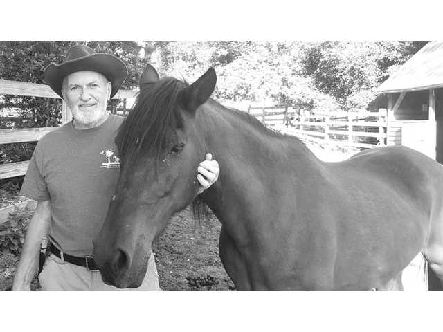 Horses, history and a call for help