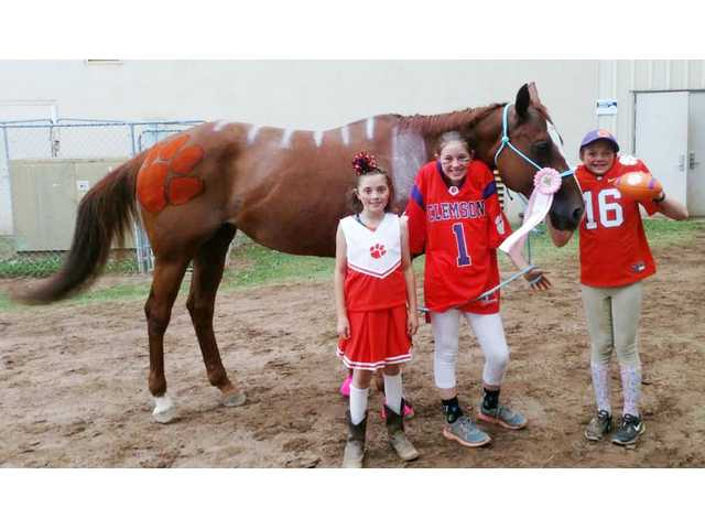 4H Horse Club scores at state show