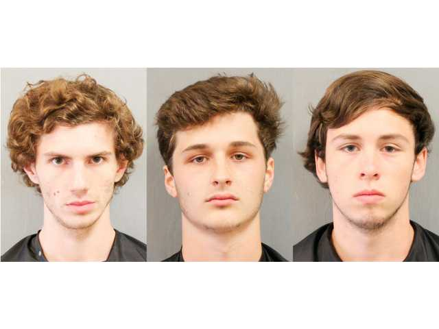 Three arrested for breaking into cars, home