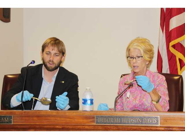 City council gets silversmith preview