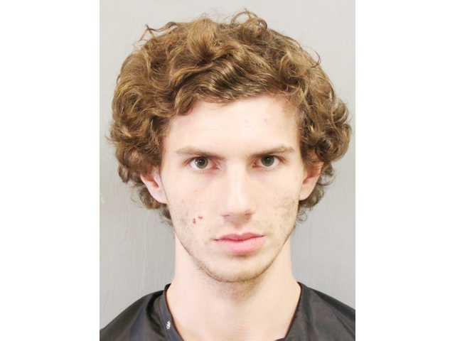 Another car break-in suspect pleads guilty